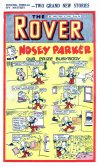 Cover For The Rover 1065