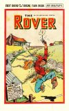 Cover For The Rover 1191