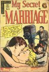 Cover For My Secret Marriage 14