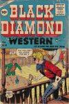 Cover For Black Diamond Western 59