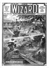 Cover For The Wizard 21