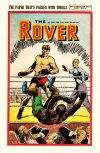 Cover For The Rover 1196