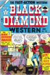Cover For Black Diamond Western 45