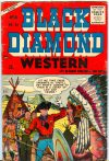 Cover For Black Diamond Western 55