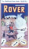 Cover For The Rover 1016