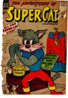 Cover For Super Cat 3