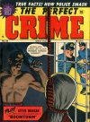 Cover For The Perfect Crime 22