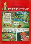 Cover For The Adventures of Peter Wheat 34