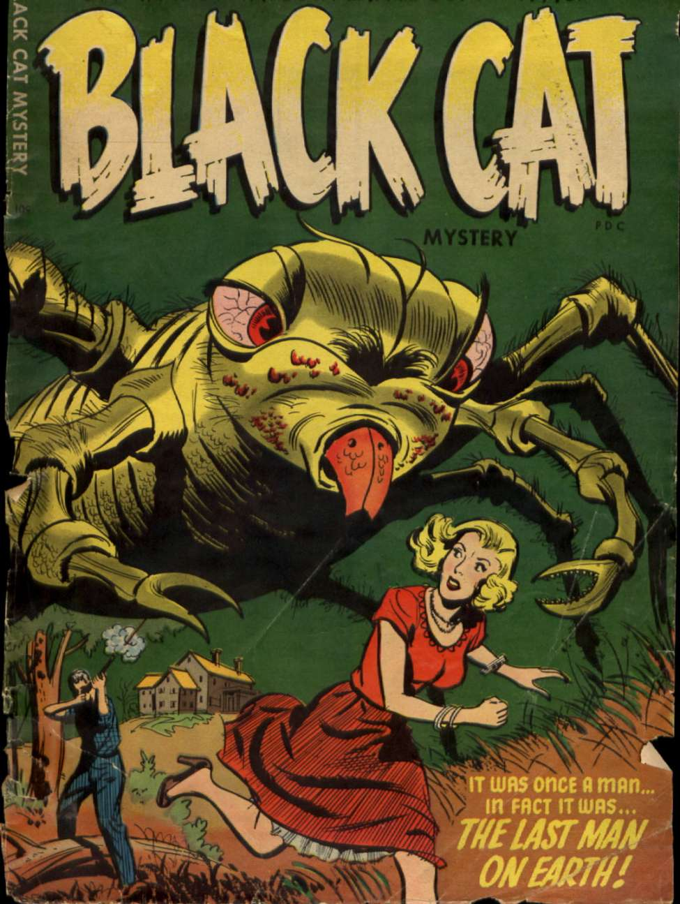 Comic Book Cover For Black Cat #53