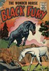 Cover For Black Fury 3