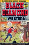 Cover For Black Diamond Western 15