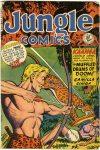 Cover For Jungle Comics 118