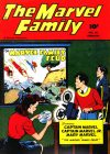 Cover For The Marvel Family 20