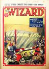 Cover For The Wizard 875