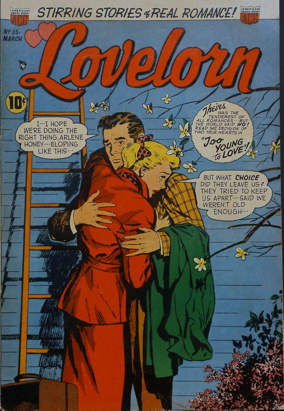 Comic Book Cover For Lovelorn #35