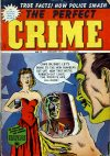 Cover For The Perfect Crime 31