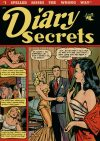 Cover For Diary Secrets 10