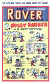 Cover For The Rover 1031
