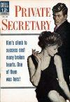 Cover For Private Secretary 1