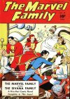Cover For The Marvel Family 10