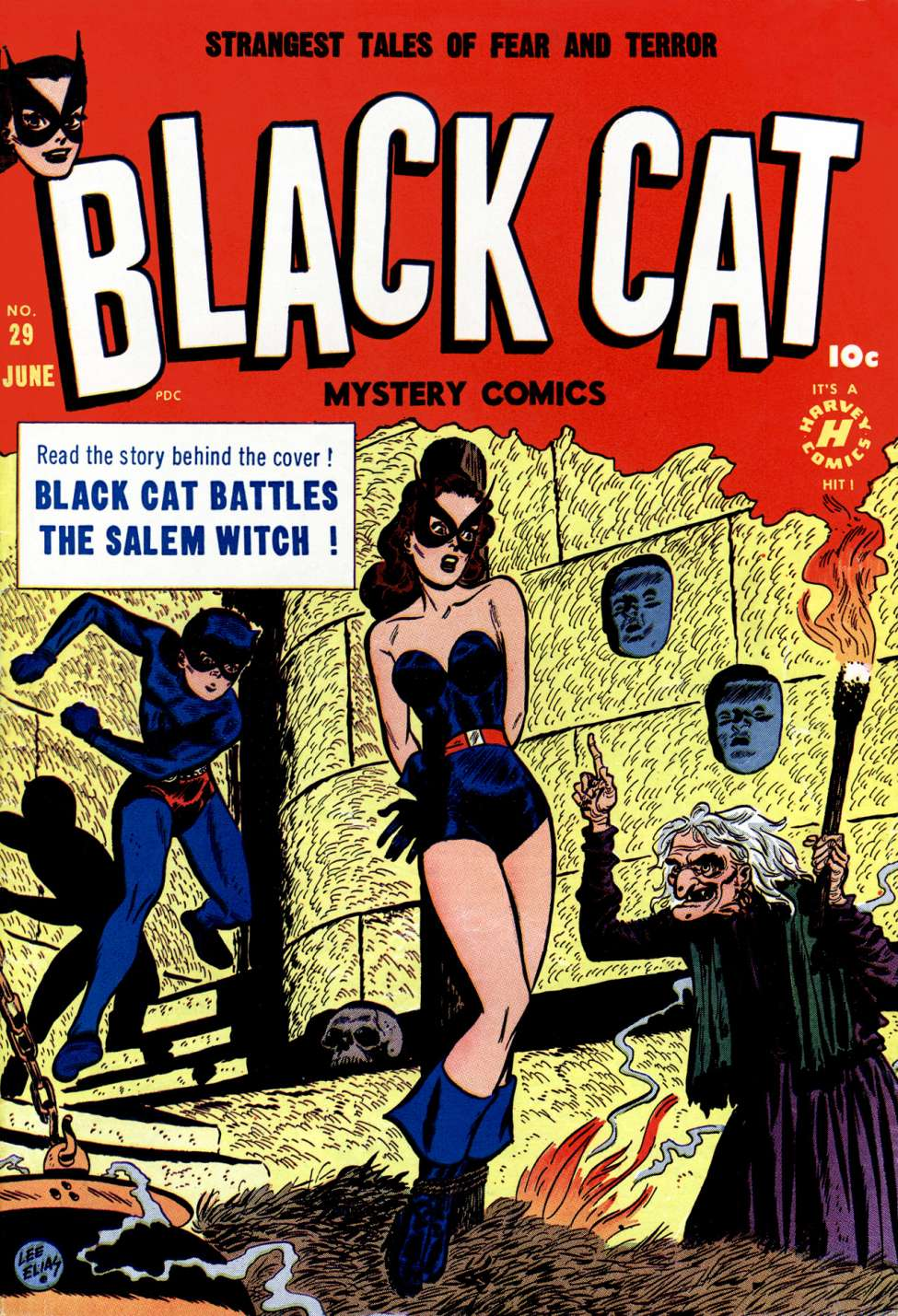 Comic Book Cover For Black Cat #29