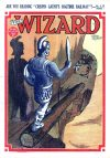 Cover For The Wizard 866
