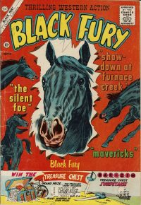 Large Thumbnail For Black Fury #29