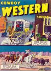 Cover For Cowboy Western 21
