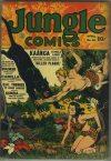 Cover For Jungle Comics 40