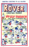 Cover For The Rover 1047
