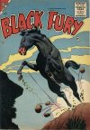 Cover For Black Fury 2