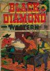 Cover For Black Diamond Western 52