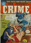 Cover For The Perfect Crime 25