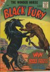 Cover For Black Fury 18