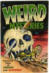 Cover For Weird Mysteries 4