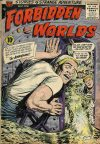 Cover For Forbidden Worlds 41
