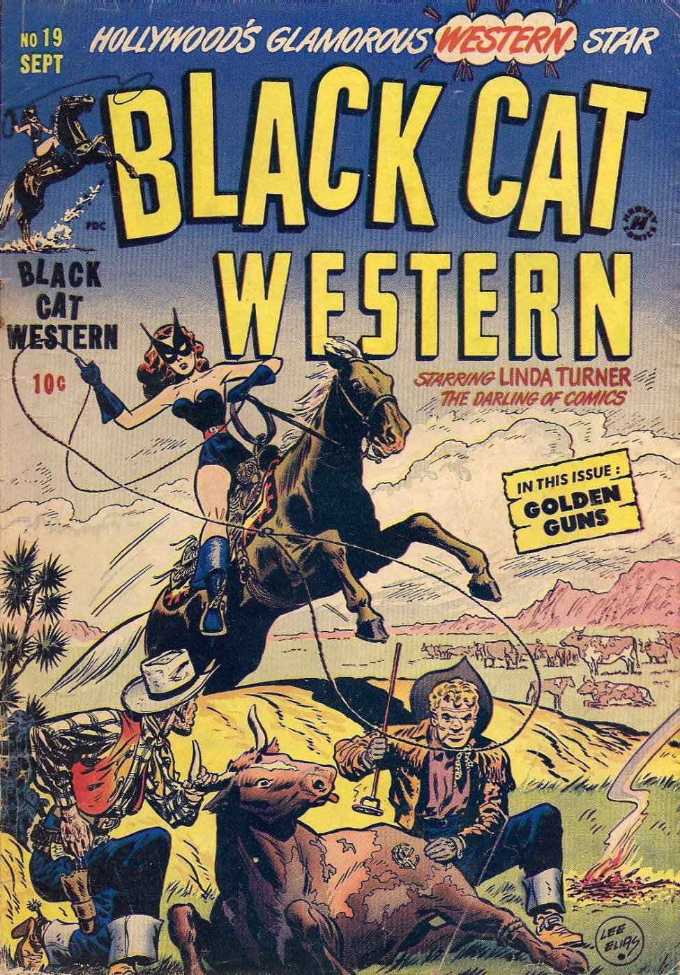 Comic Book Cover For Black Cat #19