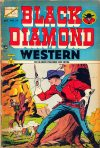Cover For Black Diamond Western 53