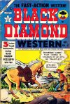 Cover For Black Diamond Western 47