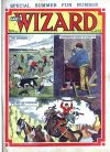 Cover For The Wizard 242