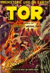 Cover For Tor 3