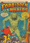 Cover For Forbidden Worlds 19
