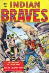 Cover For Indian Braves 2