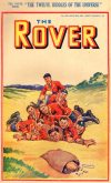 Cover For The Rover 1002