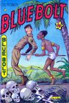 Cover For Blue Bolt v6 4