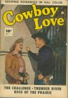 Cover For Cowboy Love 11