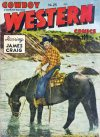 Cover For Cowboy Western 25