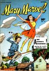 Cover For Mary Marvel 17