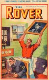 Cover For The Rover 1011