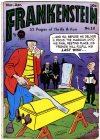 Cover For Frankenstein 12